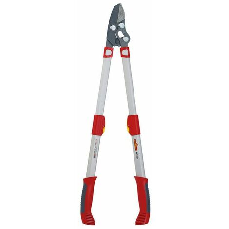 Wolf Garten Coupe-branche télescopique Power Cut RS 900 T Premium Plus - 73AGA009650