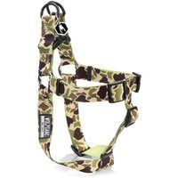 Wolfgang Harness Duck Lime Small