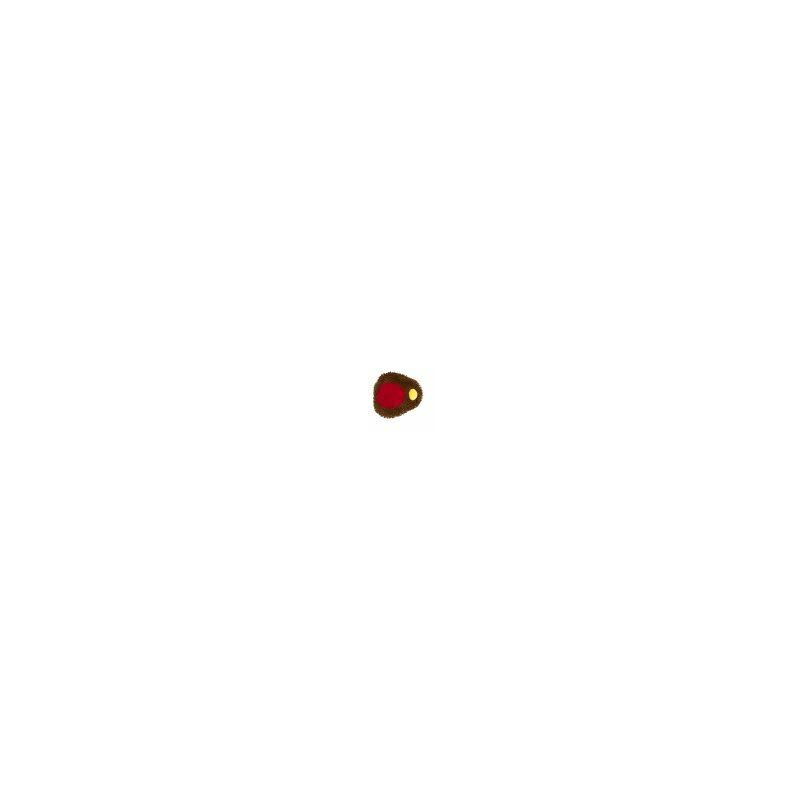 Image of X Gb Moppy Robin 6.5 - 685302