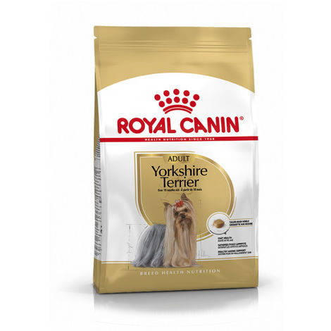 Yorkshire Terrier Adult - 500g