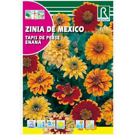 ZINIA DE MEXICO TAPIS DE PERSE ENANA - SOBRE DE SEMILLAS 3G