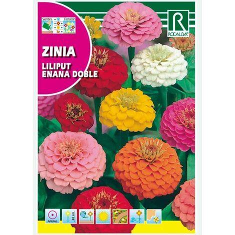ZINIA LILIPUT ENANA DOBLE VARIADA - SOBRE DE SEMILLAS 6G