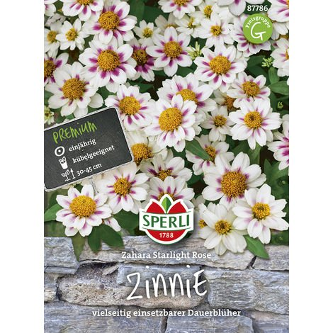 Zinnie Zahara Starlight Rose
