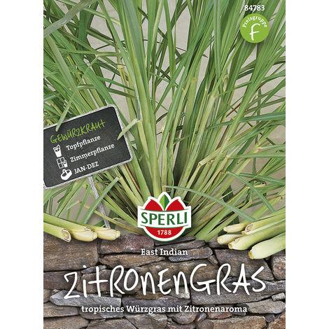"Zitronengras Sperlis ""Lemon"" East Indian"