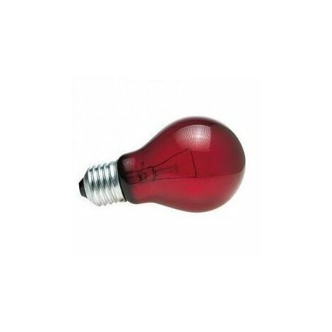 ZOOMED Lampe chauffante infrarouge nocturne - 60 W - Pour terrarium