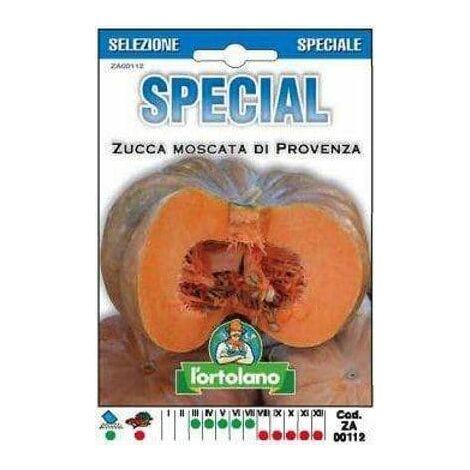 Zucca Moscata di Provenza Ibrido - L'Ortolano