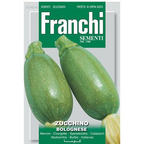 Zucchino bolognese (Semente)