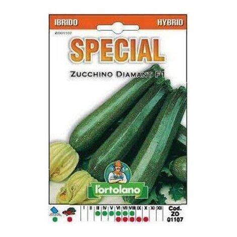 Zucchino Diamant F1 Ibrido - L'Ortolano