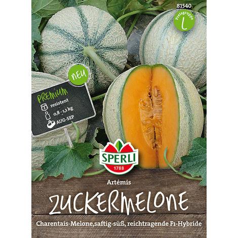 Zuckermelone, Artémis
