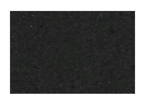 Plastica adesiva maurer mod velluto nero rotolo da 20 mt for Carta da parati in velluto