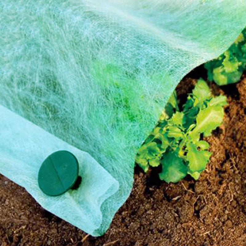 Telo TNT verde 17gr/mq 1,6x10mt protezione orto piante ortaggi giardino 520/61 - Giardino, piscina